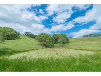View profile: !!!Application approved!!! A slice of rural heaven