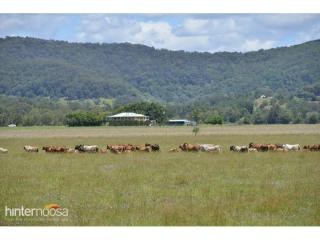 View profile: 400 acres in the old money